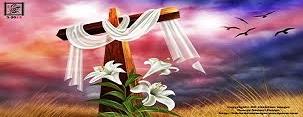 الأحد 24-9 قداس مشترك مع الكنيسة الهولندية