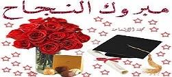 إلى الدكتورة رنا ججو …د خالد عيسى